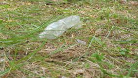 A used plastic bottle is thrown in the Park. The concept of pollution and environmental protection.