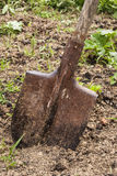 Used shovel stuck in the soil Royalty Free Stock Image