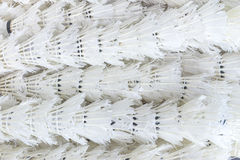 Used shuttlecock arrange in a row, background Royalty Free Stock Images