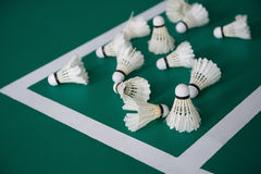 Used shuttlecocks inside the edge of badminton courts Royalty Free Stock Image