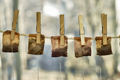 Used tea bags hanging on the clothesline Stock Photos
