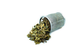 Used Tea in trash filter Royalty Free Stock Photography
