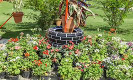 Used tires in garden Stock Images