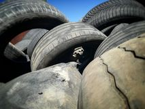 Used tyres for recycling. Waste used tyres recycled stock image