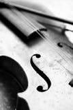 Used violin Stock Image