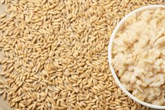 Useful breakfast. Tasty oatmeal. Neutral background. Useful breakfast. Tasty oatmeal porridge. Neutral background. Many oat grains Royalty Free Stock Photos