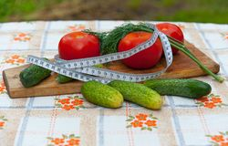 Useful diet Royalty Free Stock Photography