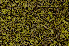 Useful green tea Stock Image