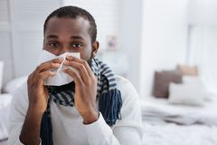 Calm ill man using soft handkerchief at home. Useful handkerchief. Unemotional calm man using a white soft handkerchief after sneezing Stock Images