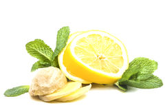 Useful medicinal mint with ginger and lemon Royalty Free Stock Photos