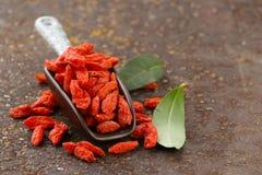 Useful red goji berries Stock Photo
