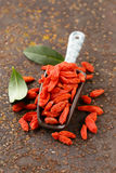 Useful red goji berries Royalty Free Stock Image