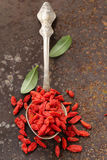 Useful red goji berries Royalty Free Stock Photos