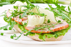 Useful sandwich with ham and herbs Stock Image