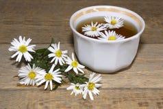 Useful tea. Salutary tea with flowers of a camomile Stock Image