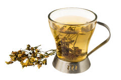 Useful tea with dried flowers St. John`s wort on a white backgro Stock Image