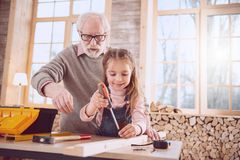 Joyful positive girl using a screwdriver. Useful tools. Joyful positive girl using a screwdriver while working together with her grandfather stock photos