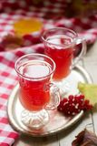 Useful vitamin tea from berries of the viburnum with honey with glass cups. Stock Image