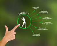 Usefulness of exercising. Presenting Diagram of Usefulness of exercising Stock Photography