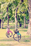 Users consider two bicycles in the park. For the public holiday vintage style Stock Photos