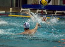 Ushakov V. Dynamo(Moscow) team of waterpolo Royalty Free Stock Photos