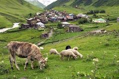 Ushguli by av Svaneti i Georgia Royaltyfri Fotografi