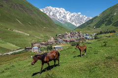 Ushguli in Georgia. Villages community called Ushguli in Upper Svanetia region, Georgia. Shkhara mountain on background Stock Photography