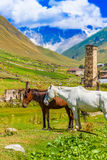 Ushguli, Hogere Svaneti, Georgië, Europa Stock Afbeelding