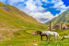 Ushguli, Svaneti superior, Georgia, Europa Foto de archivo libre de regalías