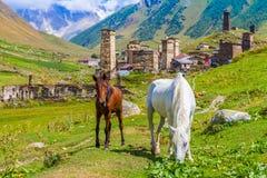 Ushguli, Upper Svaneti, Georgia, Europe. Ushguli, Upper Svaneti in Georgia, Europe. Caucasus mountains Stock Photos