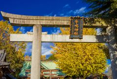 Ushijima Shrine in autumn in Tokyo. Religion and spirituality in Tokyo. Autumn view of Ushijima Shrine main gate with beautiful yellow ginkgo leaves royalty free stock photos