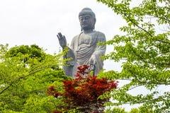 Ushiku Daibutsu,日本 免版税图库摄影