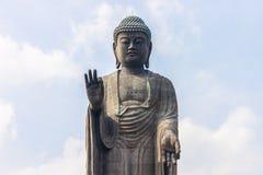 Ushiku Daibutsu, Giappone Fotografia Stock Libera da Diritti