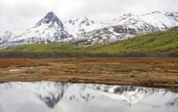 Ushuaia´s landscape Royalty Free Stock Photos