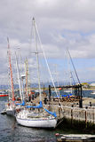 Ushuaia港口 免版税图库摄影