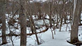 Ushuaia湖 库存照片