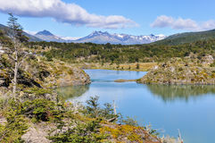 In Ushuaia, Argentina. Tierra del Fuego National Park in Ushuaia, Argentina royalty free stock image