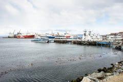 Ushuaia, het kapitaal van Tierra del Fuego, Agenitina Royalty-vrije Stock Foto