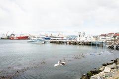 Ushuaia, la capitale di Tierra del Fuego, Agenitina Immagini Stock Libere da Diritti