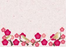 Usignuolo y blanco-ojo japoneses en árbol del ume stock de ilustración