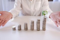 Usine croissante sur la rangée de pile de pièce de monnaie des pièces de monnaie pour des finances et encaisser le concept image stock
