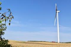 Usine d'énergie éolienne dans Alibunar, Serbie Photographie stock