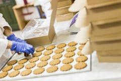 Usine de biscuits image stock