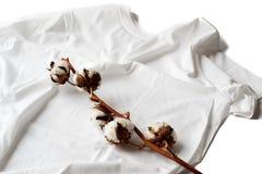 Usine de coton sur une chemise de coton Image libre de droits