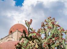 Usine de figues de Barbarie avec des fruits ; dôme rouge d'une église à l'arrière-plan (Palerme, Sicile) photo libre de droits