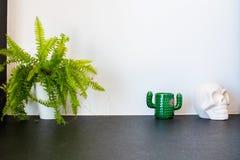 Usine de fougère, tasse en forme de cactus et crâne mexicain blanc en plâtre photographie stock