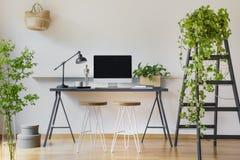 Usine de lierre sur une échelle en bois dans un intérieur moderne avec wal blanc Photo stock