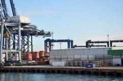 Usine de mer dans Docas Photographie stock libre de droits