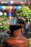 Usine de parapluie Photo libre de droits