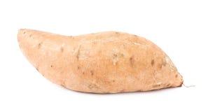 Usine de patate douce d'isolement Photo libre de droits